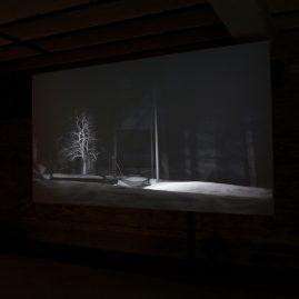 Inertia, installation view Collectie De Groen, Arnhem (NL), 2017, Alexandra Crouwers