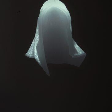 Untitled [KAP]