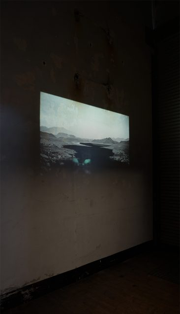 Studio Omstand, Arnhem. Solo. 2016. The White Hide IV, videoloop on slide projection, 2016.