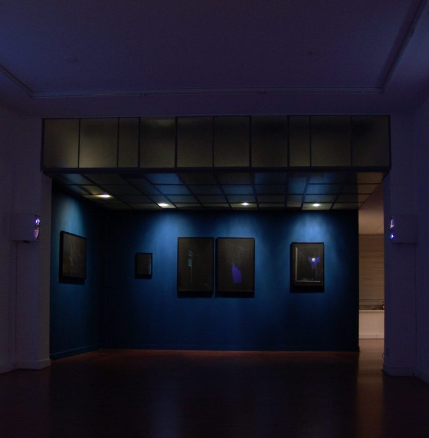 Installation view I.M. Dog, Star, LhGWR Gallery, The Hague (NL), back wall, 5 inkjetprints, 2013