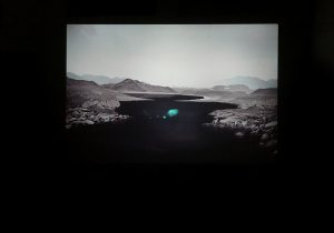 The White Hide [IV], Slide & videoprojection, no sound, 2016, Alexandra Crouwers